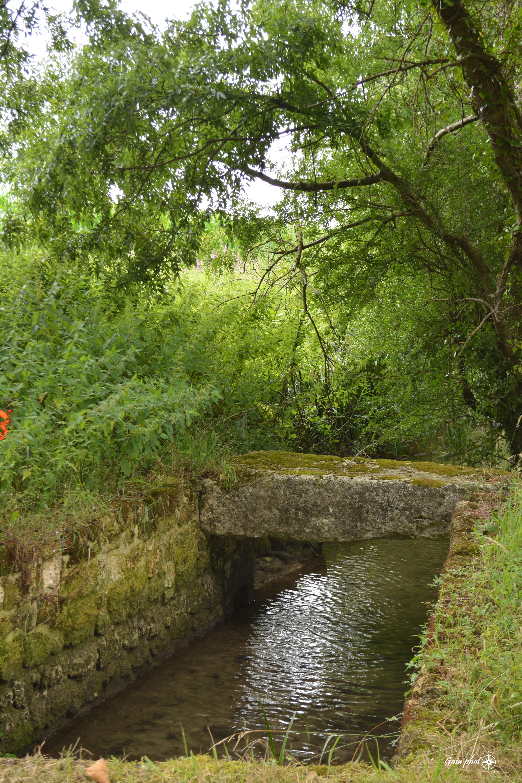 Sablonceaux pont de Berthegille
